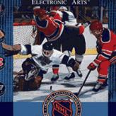 nhl hockey 91